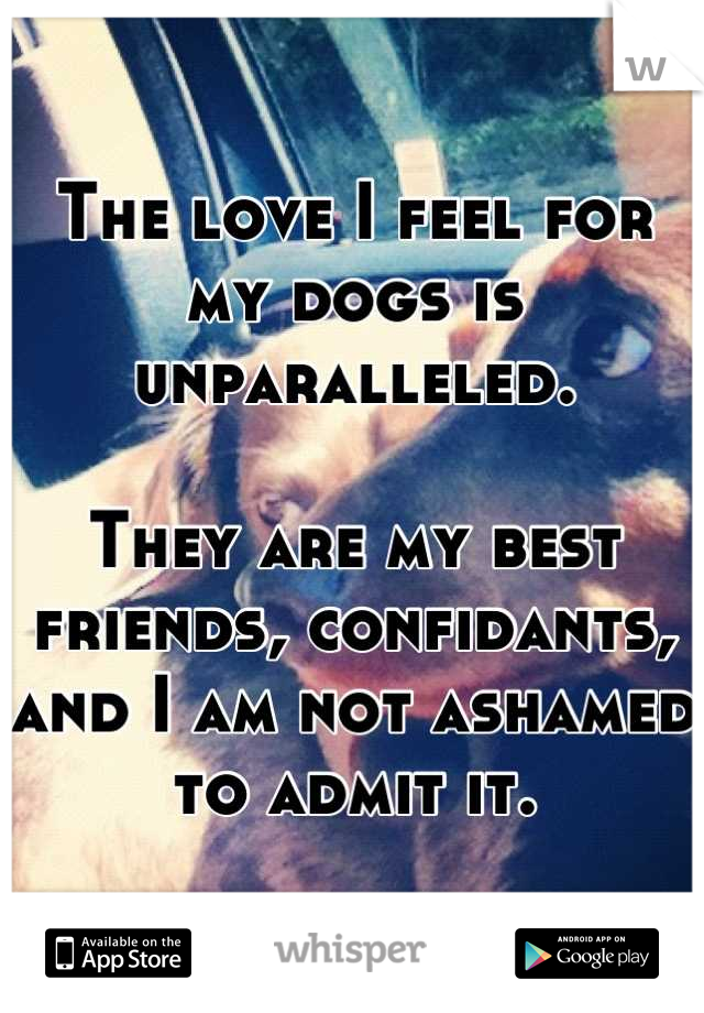 The love I feel for my dogs is unparalleled.   They are my best friends, confidants, and I am not ashamed to admit it.