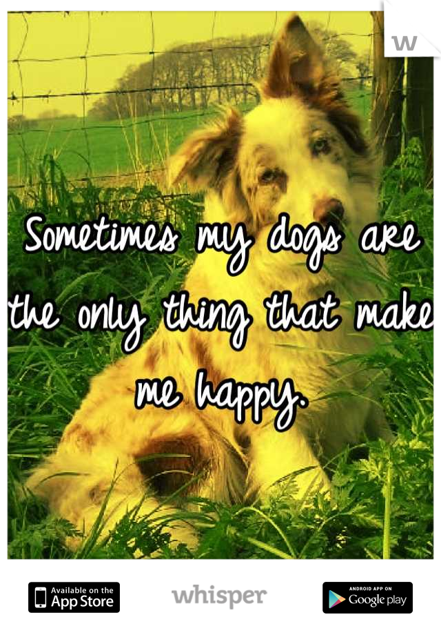 Sometimes my dogs are the only thing that make me happy.