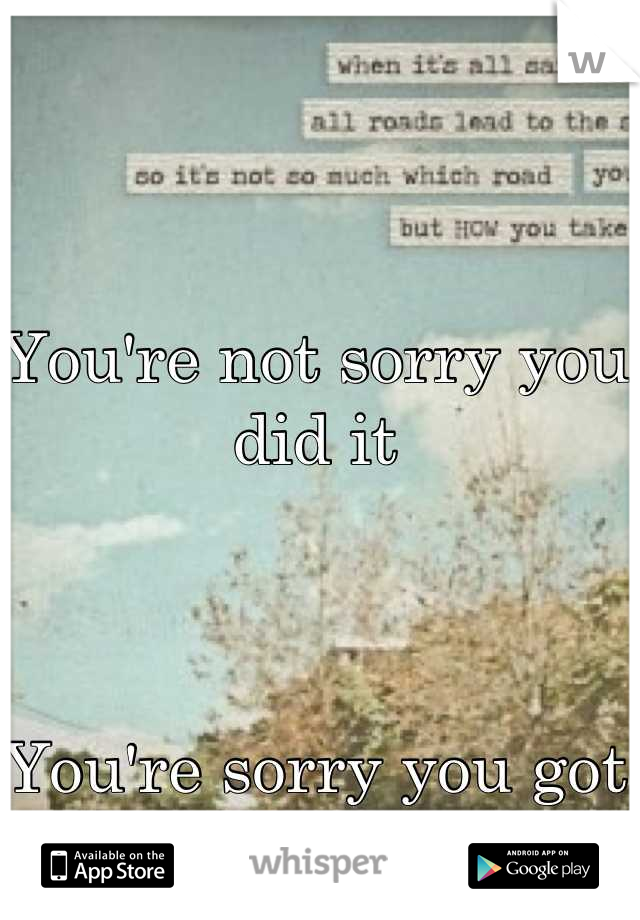 You're not sorry you did it    You're sorry you got caught