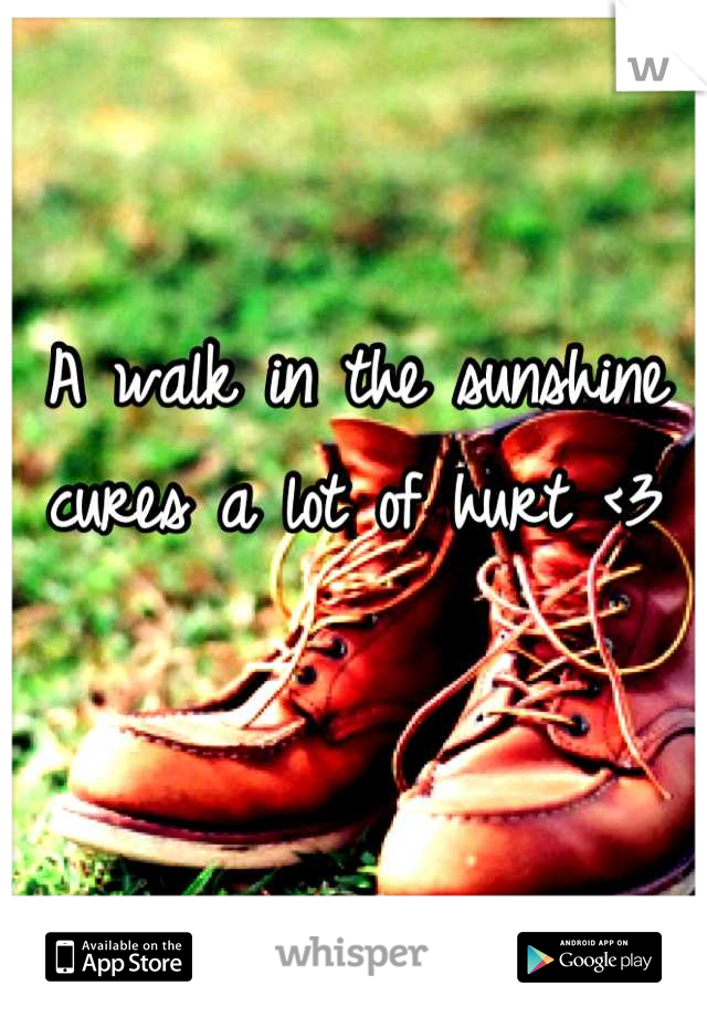 A walk in the sunshine cures a lot of hurt <3