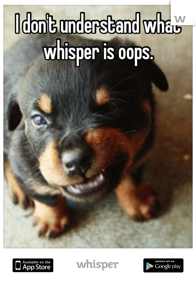 I don't understand what whisper is oops.