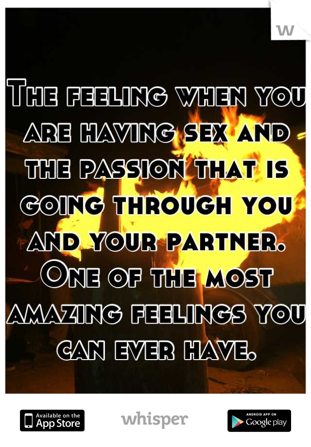 The feeling when you are having sex and the passion that is going through you and your partner. One of the most amazing feelings you can ever have.