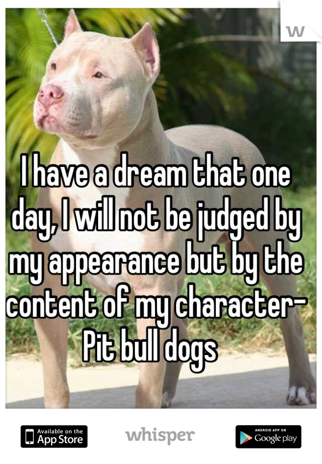 I have a dream that one day, I will not be judged by my appearance but by the content of my character- Pit bull dogs