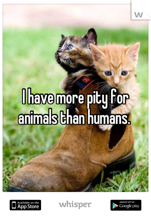 I have more pity for animals than humans.