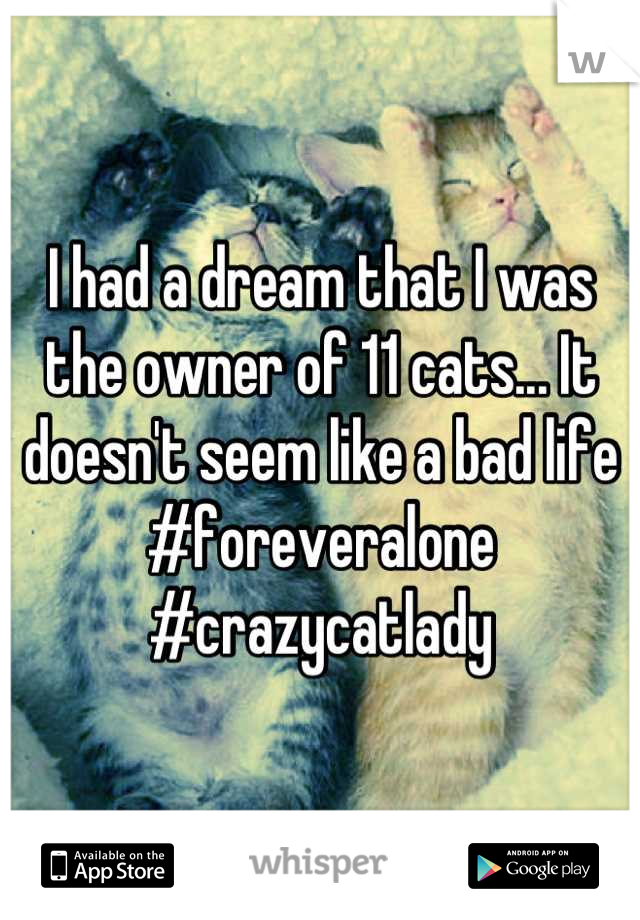I had a dream that I was the owner of 11 cats... It doesn't seem like a bad life #foreveralone #crazycatlady
