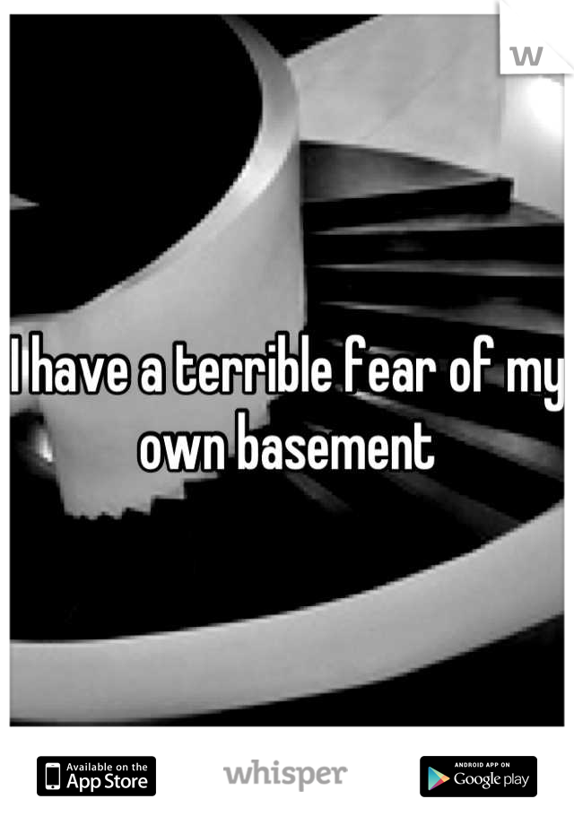 I have a terrible fear of my own basement