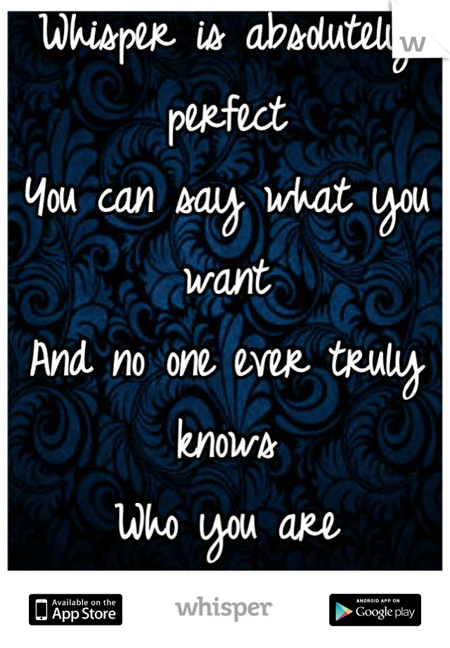 Whisper is absolutely perfect You can say what you want And no one ever truly knows Who you are  It's perfect