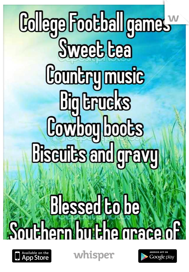 College Football games Sweet tea Country music   Big trucks Cowboy boots Biscuits and gravy   Blessed to be  Southern by the grace of God