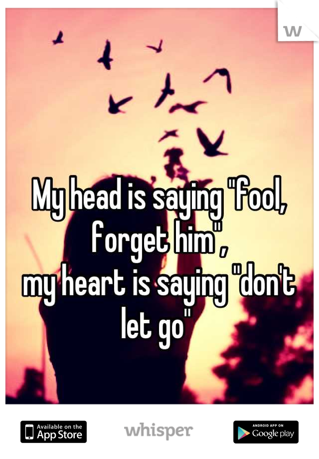 """My head is saying """"fool, forget him"""",  my heart is saying """"don't let go"""""""