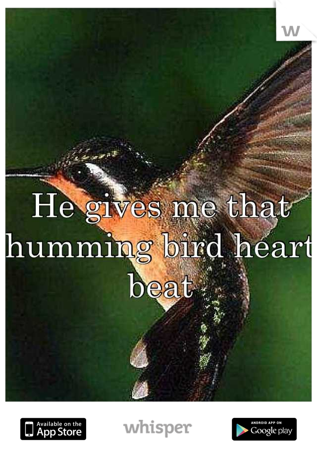 He gives me that humming bird heart beat