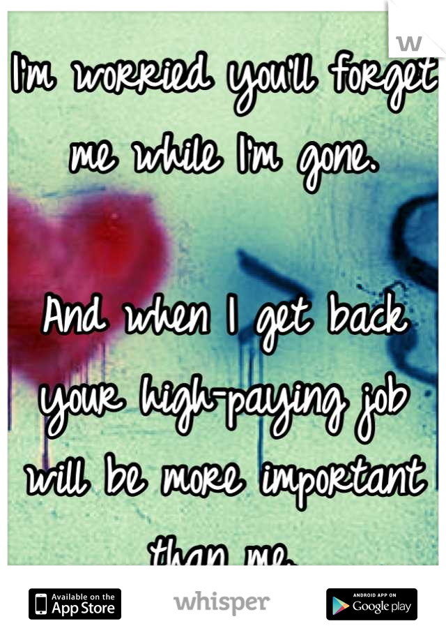 I'm worried you'll forget me while I'm gone.   And when I get back your high-paying job will be more important than me.