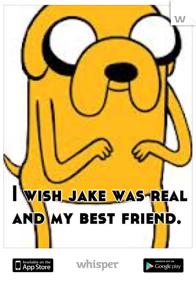 I wish jake was real and my best friend.