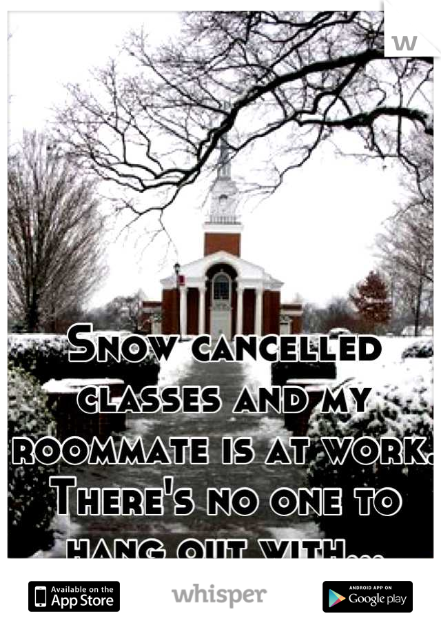 Snow cancelled classes and my roommate is at work.   There's no one to hang out with...  Netflix it is!