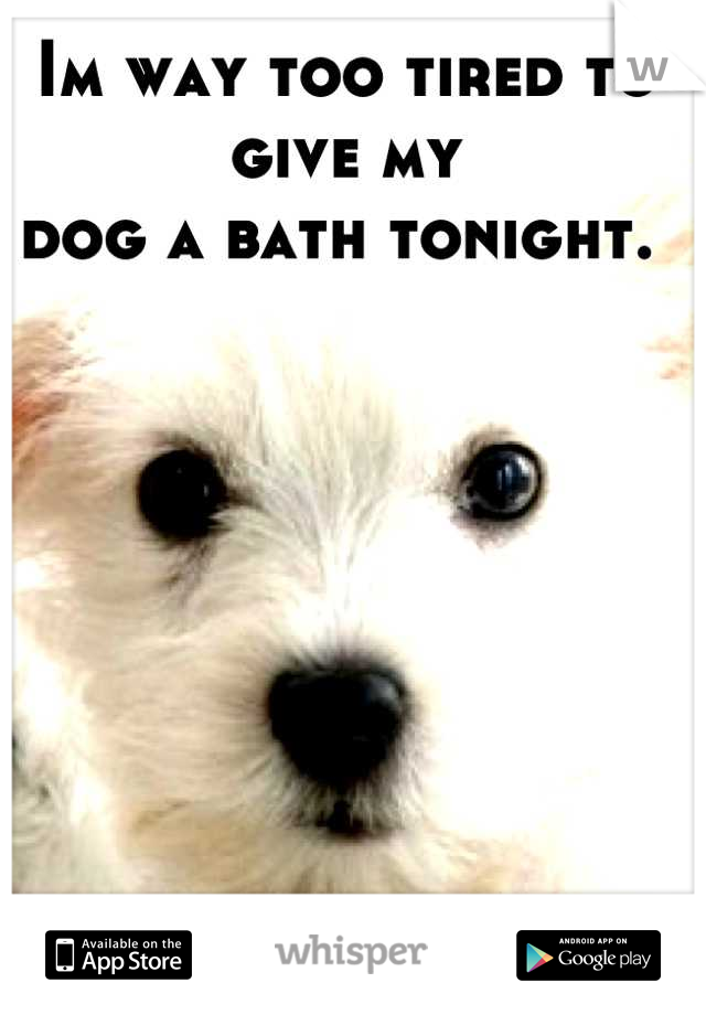 Im way too tired to give my  dog a bath tonight.