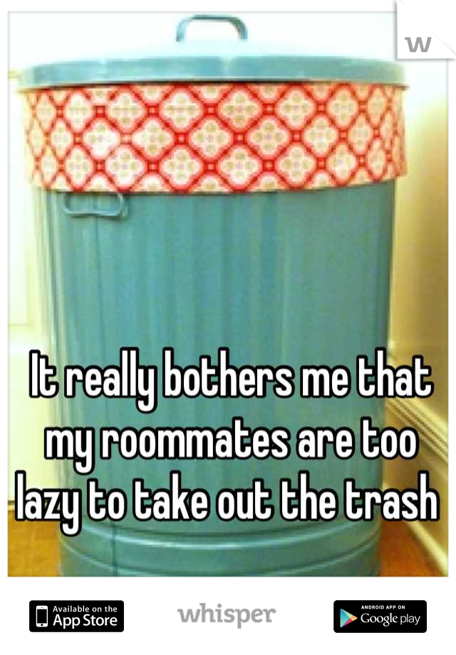 It really bothers me that my roommates are too lazy to take out the trash