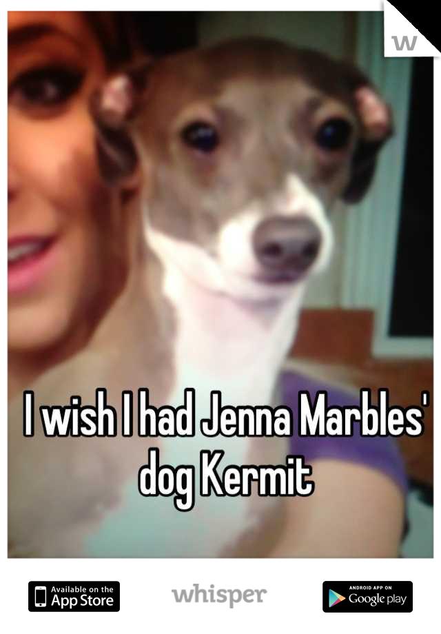 I wish I had Jenna Marbles' dog Kermit