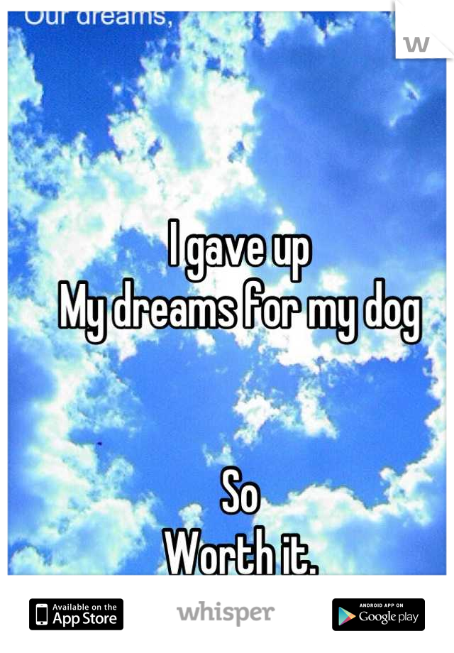 I gave up My dreams for my dog   So Worth it.