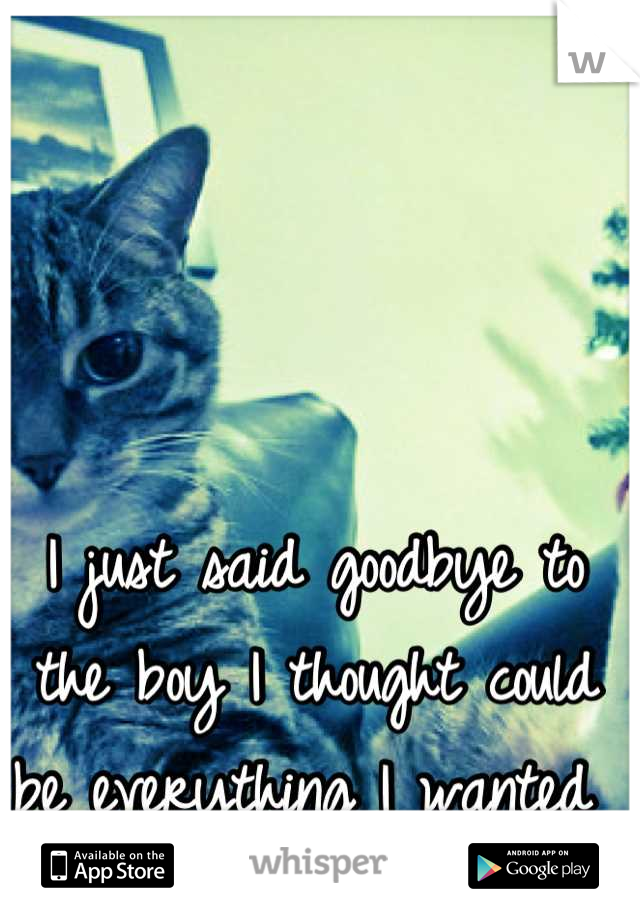 I just said goodbye to the boy I thought could be everything I wanted