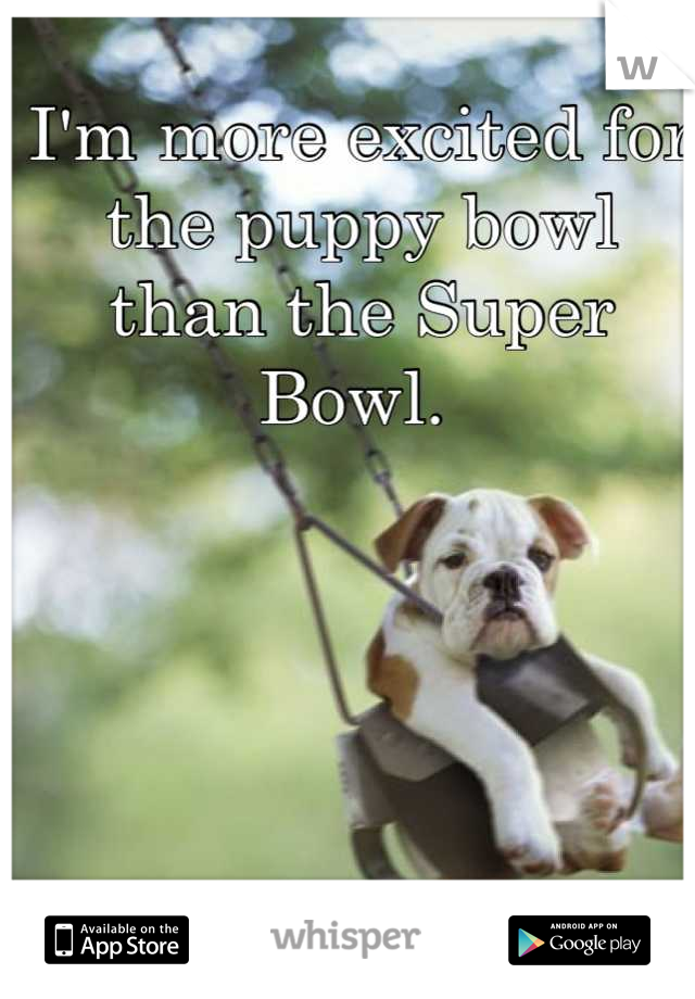 I'm more excited for the puppy bowl than the Super Bowl.