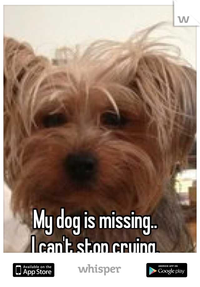 My dog is missing..  I can't stop crying.