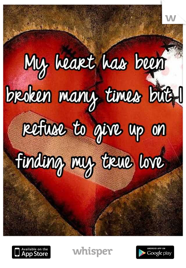 My heart has been broken many times but I refuse to give up on finding my true love