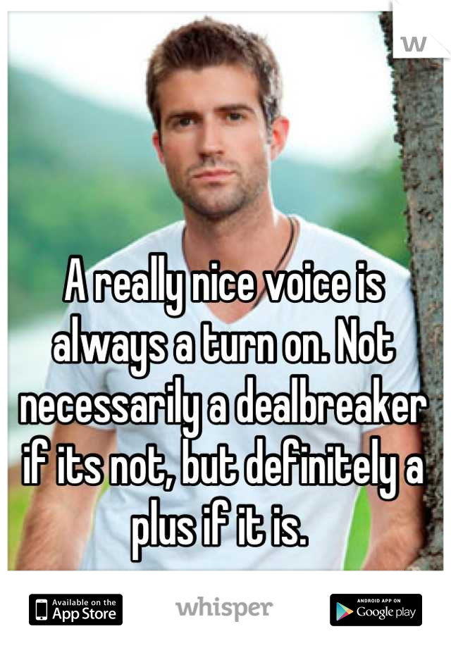 A really nice voice is always a turn on. Not necessarily a dealbreaker if its not, but definitely a plus if it is.