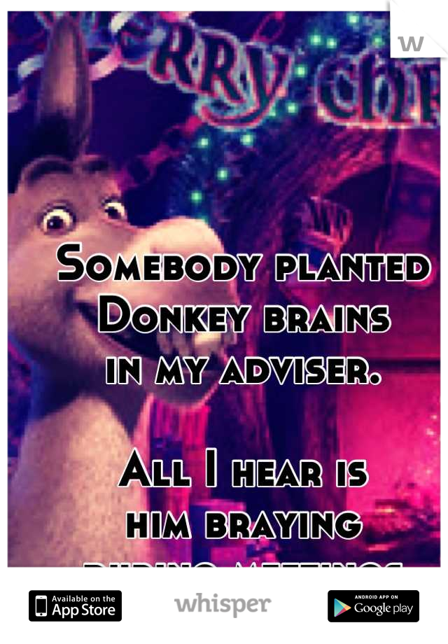 Somebody planted  Donkey brains  in my adviser.  All I hear is  him braying  during meetings