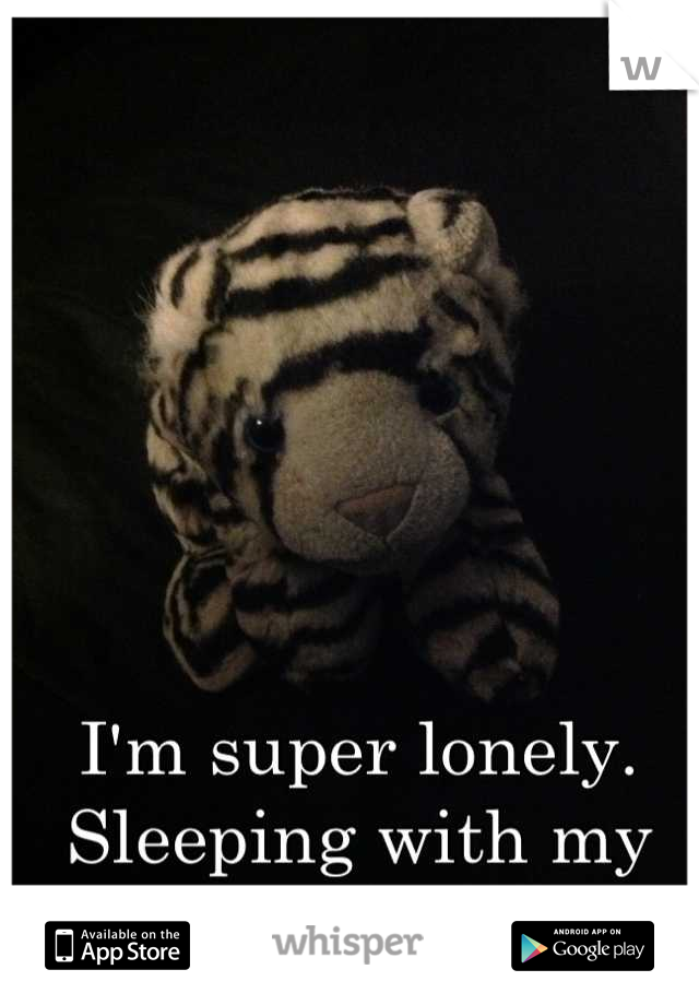 I'm super lonely. Sleeping with my tiger friend tonight.
