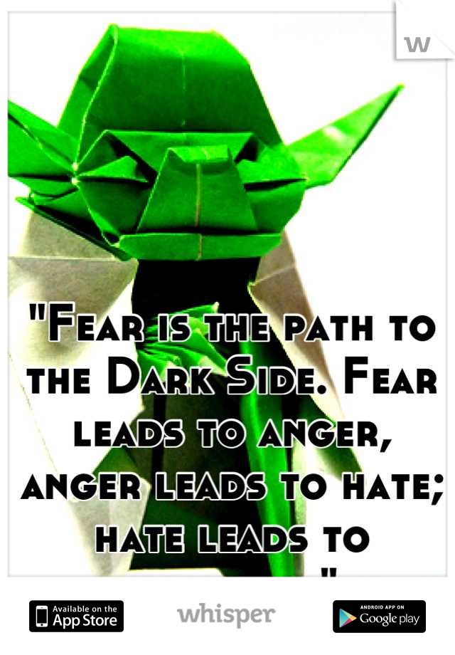 """Fear is the path to the Dark Side. Fear leads to anger, anger leads to hate; hate leads to suffering"""