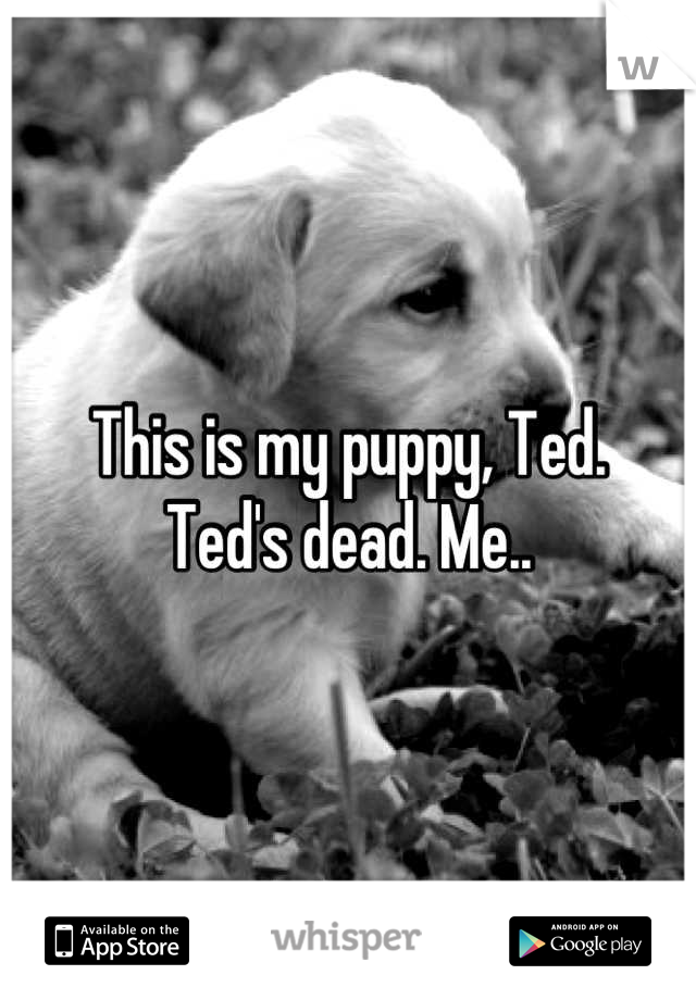 This is my puppy, Ted. Ted's dead. Me..