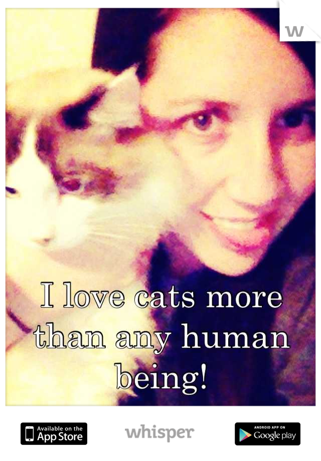 I love cats more than any human being!