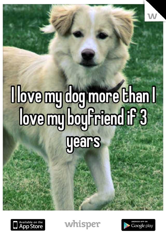 I love my dog more than I love my boyfriend if 3 years