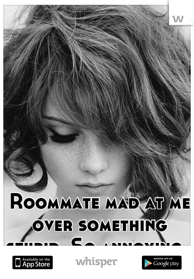 Roommate mad at me over something stupid. So annoying.