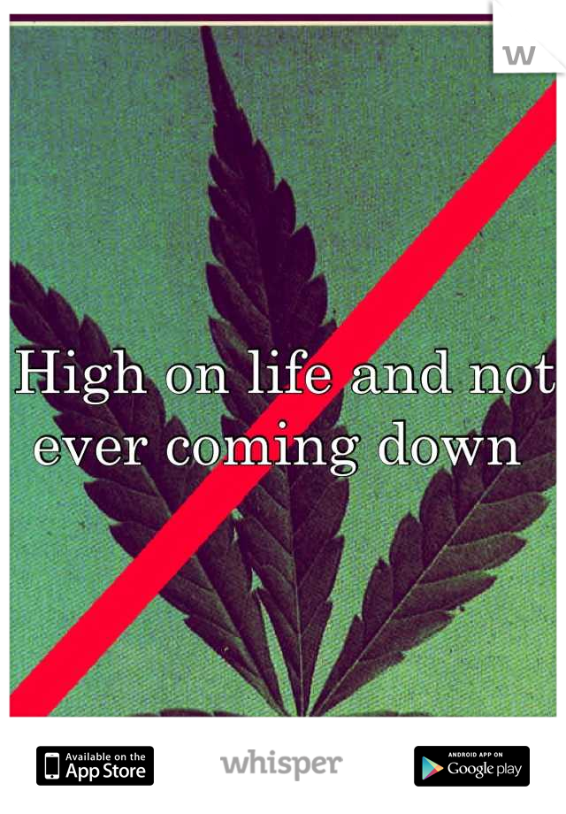 High on life and not ever coming down
