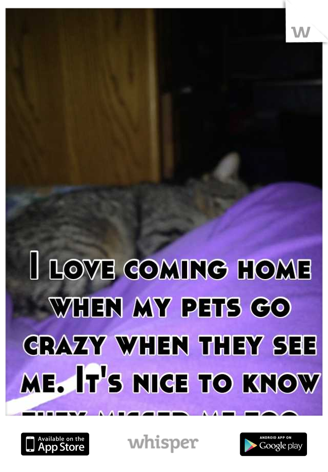 I love coming home when my pets go crazy when they see me. It's nice to know they missed me too.