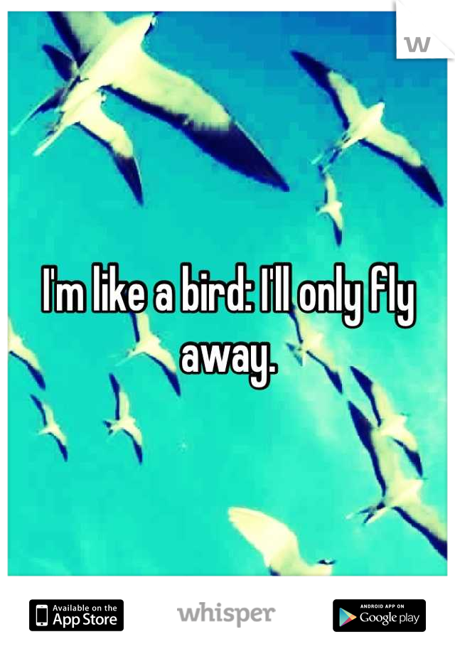 I'm like a bird: I'll only fly away.