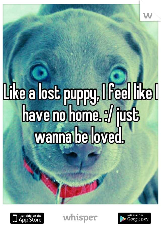 Like a lost puppy, I feel like I have no home. :/ just wanna be loved.