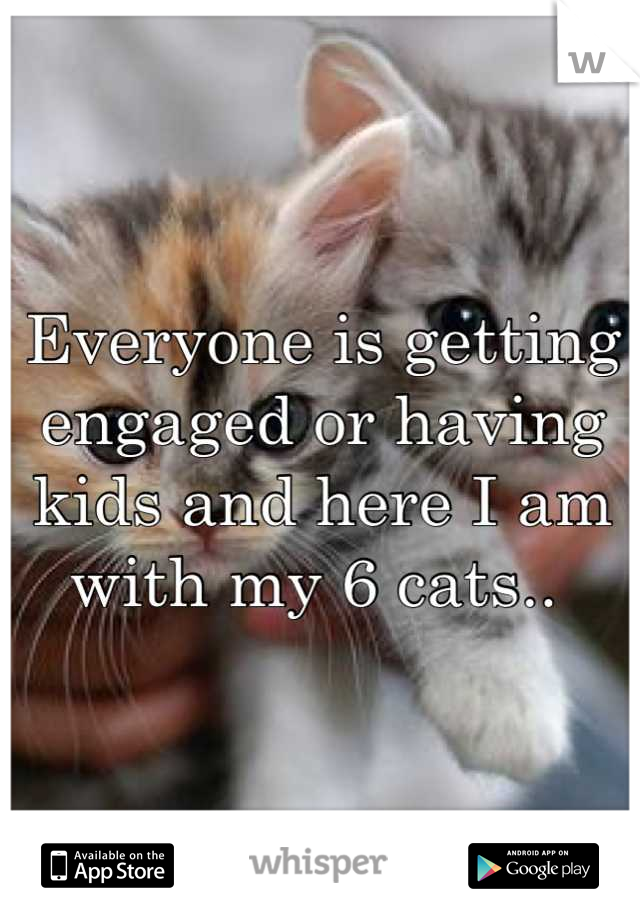 Everyone is getting engaged or having kids and here I am with my 6 cats..