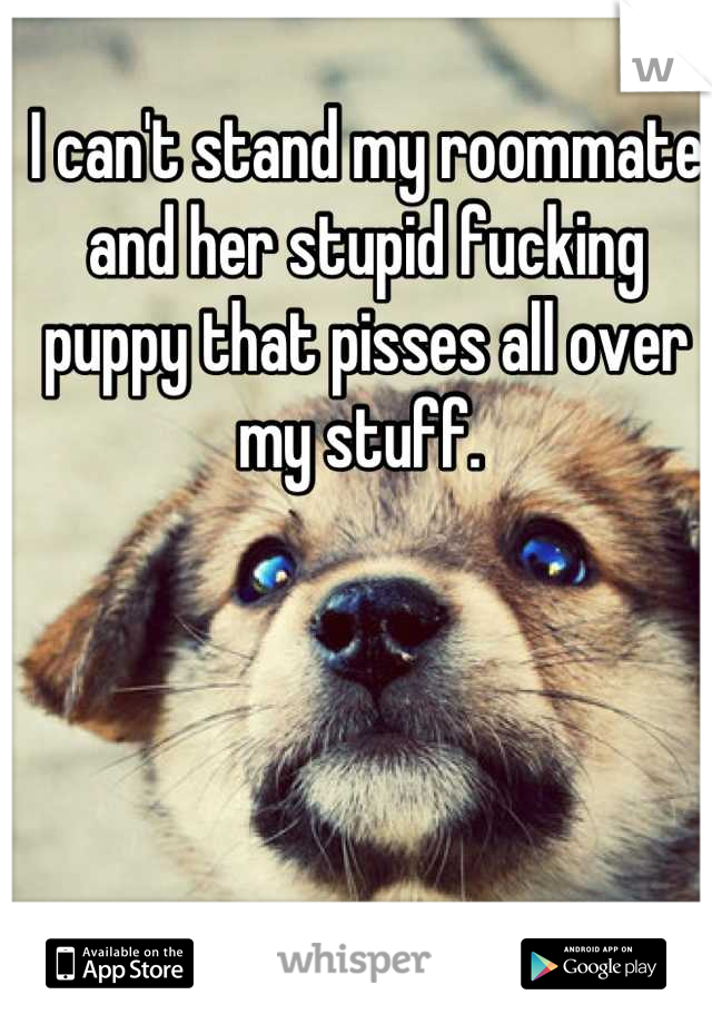 I can't stand my roommate and her stupid fucking puppy that pisses all over my stuff.