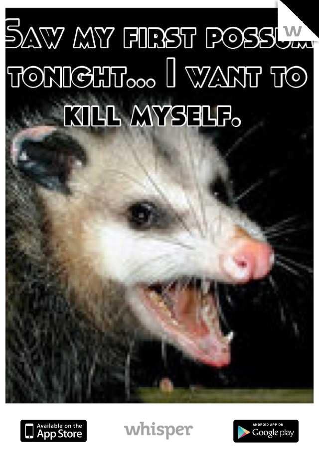 Saw my first possum tonight... I want to kill myself.