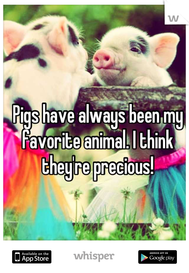Pigs have always been my favorite animal. I think they're precious!