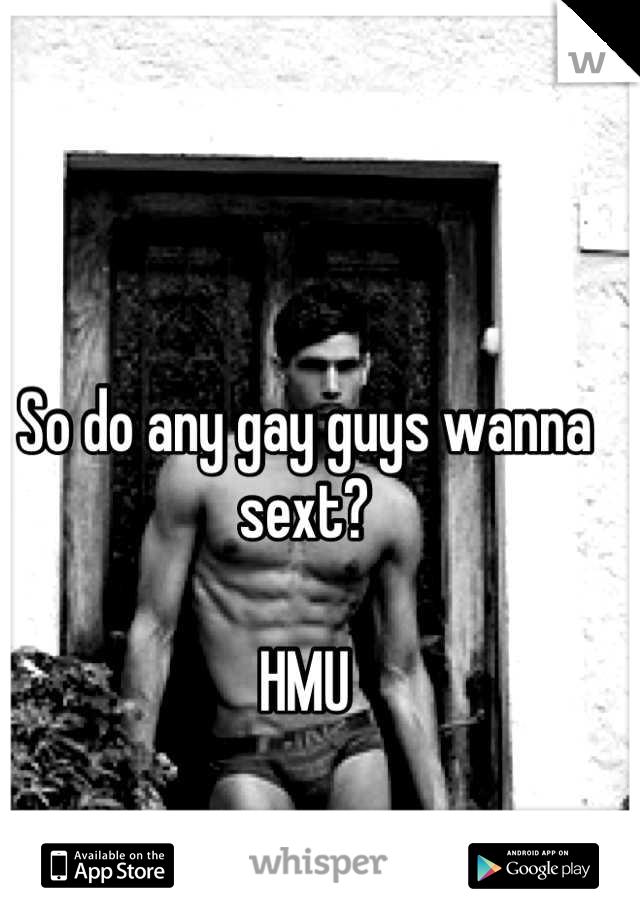 So do any gay guys wanna sext?   HMU