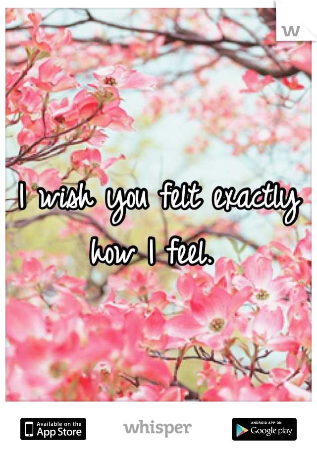 I wish you felt exactly how I feel.