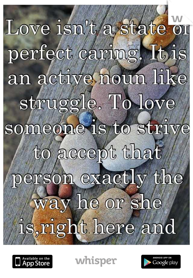 Love isn't a state of perfect caring. It is an active noun like struggle. To love someone is to strive to accept that person exactly the way he or she is,right here and  now.