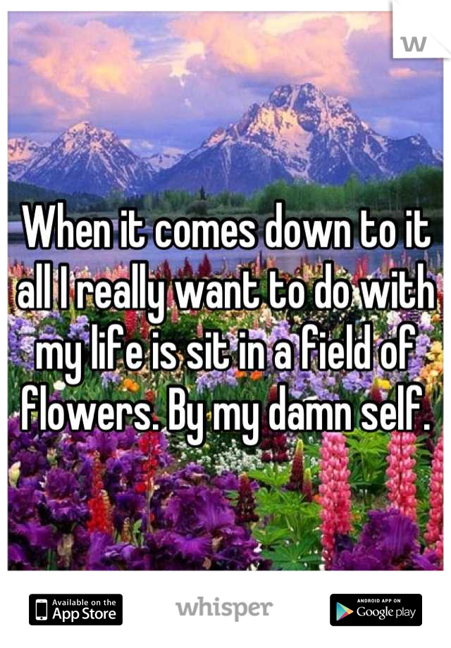 When it comes down to it all I really want to do with my life is sit in a field of flowers. By my damn self.