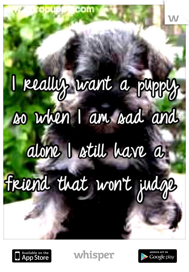 I really want a puppy so when I am sad and alone I still have a friend that won't judge