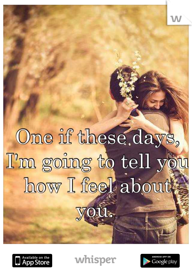 One if these days, I'm going to tell you how I feel about you.