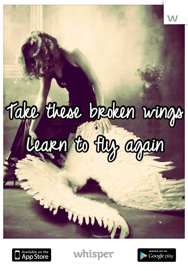Take these broken wings Learn to fly again