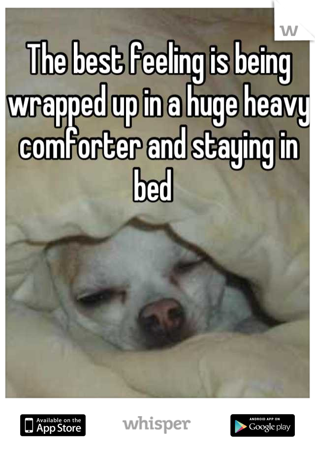 The best feeling is being wrapped up in a huge heavy comforter and staying in bed