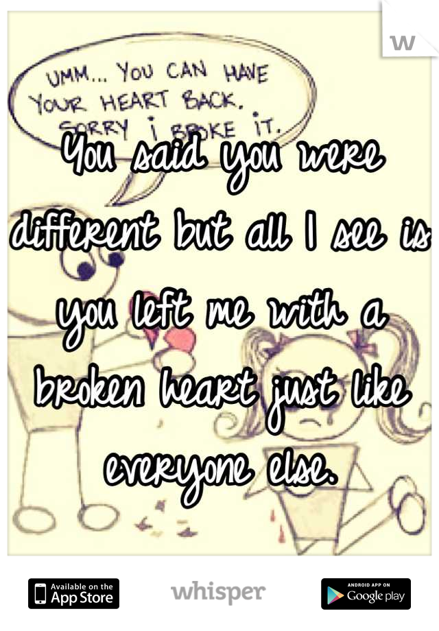 You said you were different but all I see is you left me with a broken heart just like everyone else.